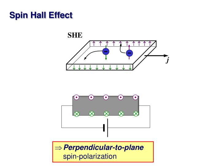 pdf Biochemie