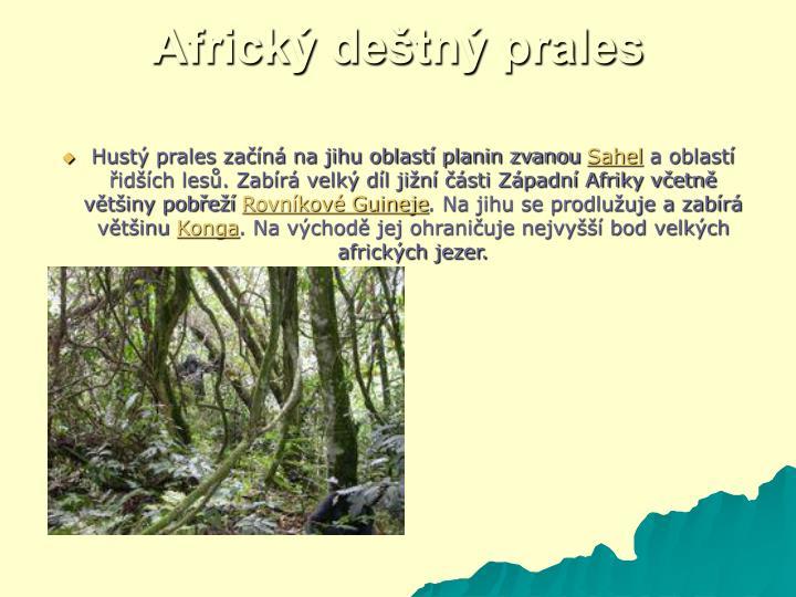 Africký deštný prales