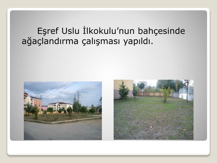 Eşref Uslu İlkokulu'nun bahçesinde ağaçlandırma çalışması yapıldı.