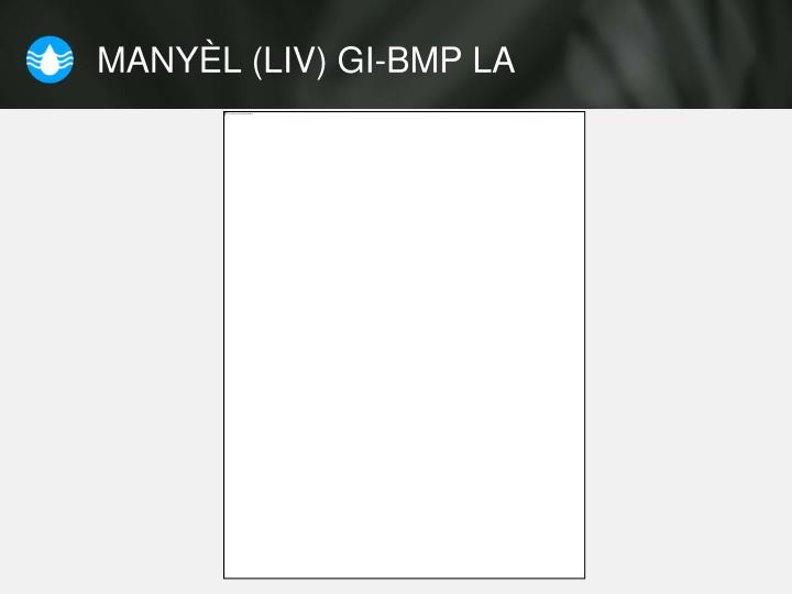 MANYÈL (LIV) GI-BMP LA