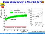 study shadowing in p pb at 8 8 tev