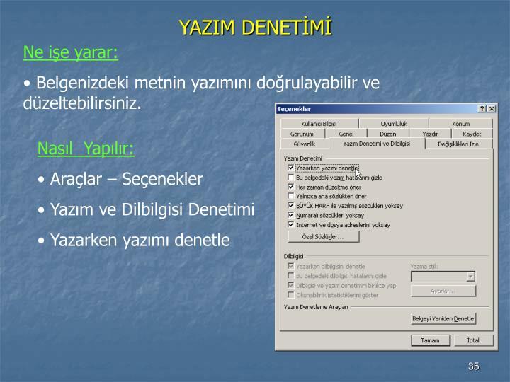 YAZIM DENETİMİ