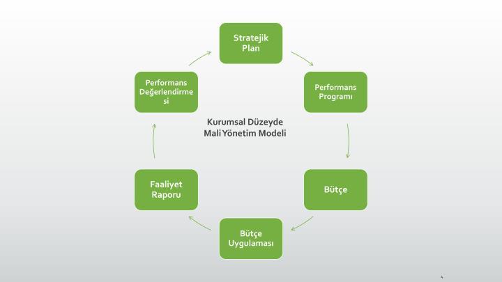 Kurumsal Düzeyde Mali Yönetim Modeli