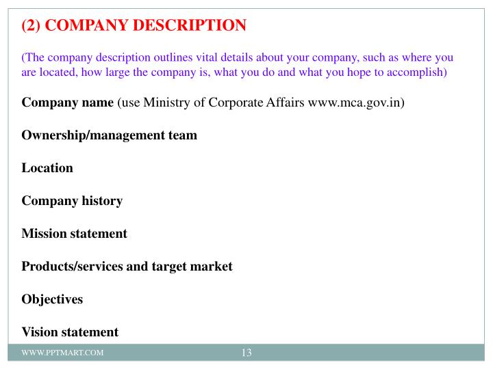 (2) COMPANY DESCRIPTION