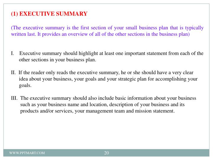 (1) EXECUTIVE SUMMARY