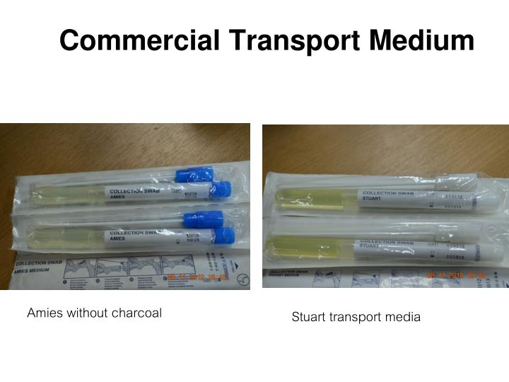 Commercial Transport Medium