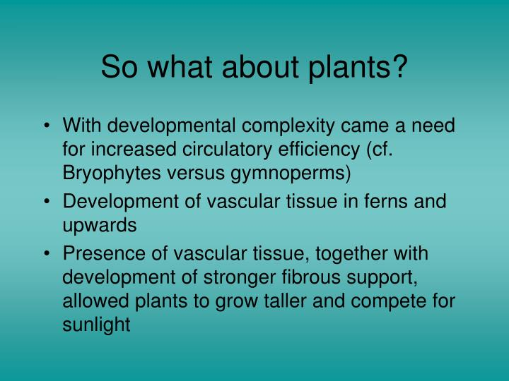 So what about plants?