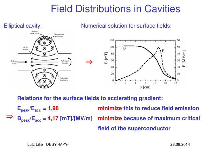 Field Distributions in Cavities