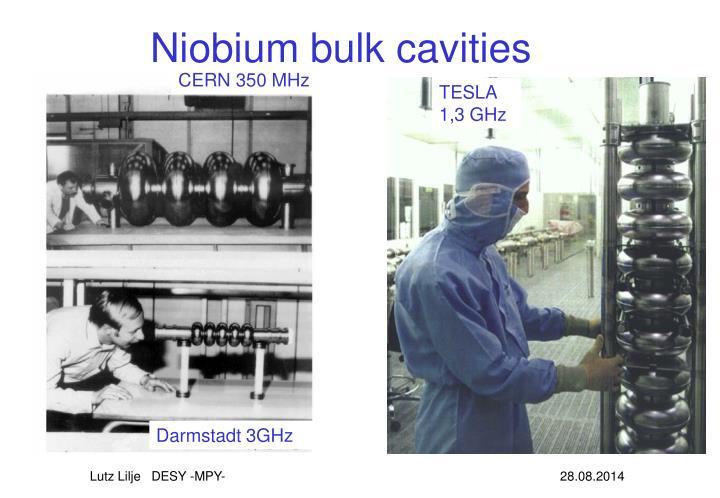 Niobium bulk cavities