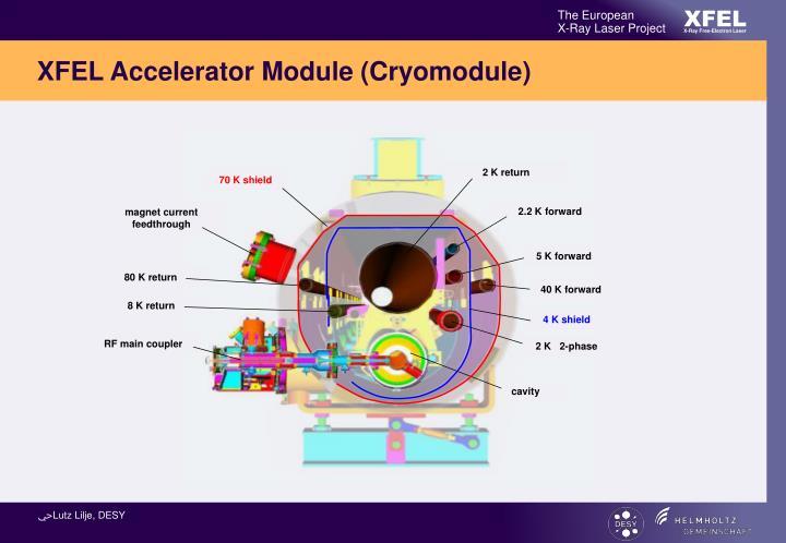 XFEL Accelerator Module (Cryomodule)