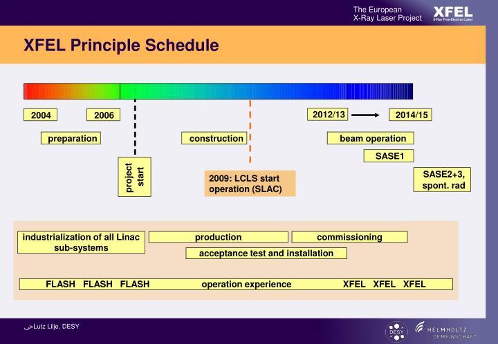 XFEL Principle Schedule