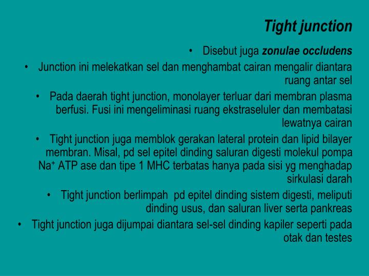 Tight junction