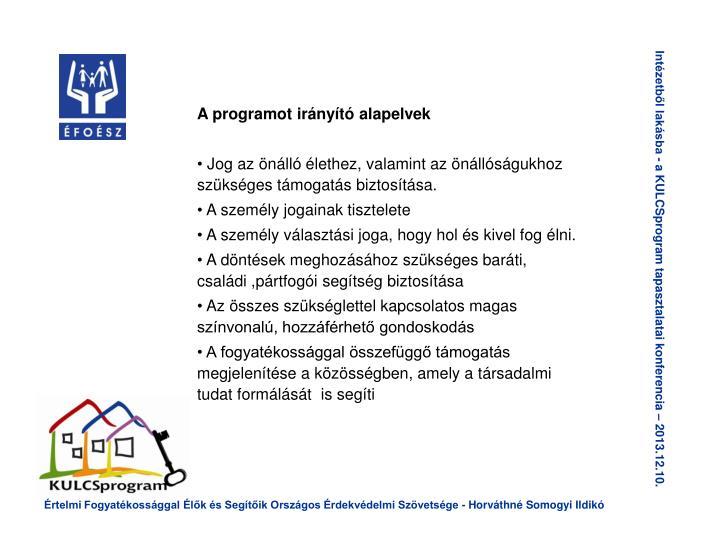 A programot irányító alapelvek