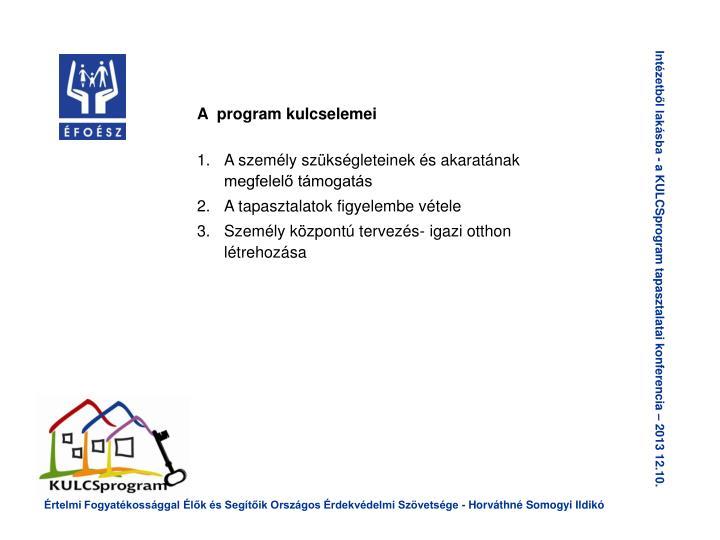 A  program kulcselemei