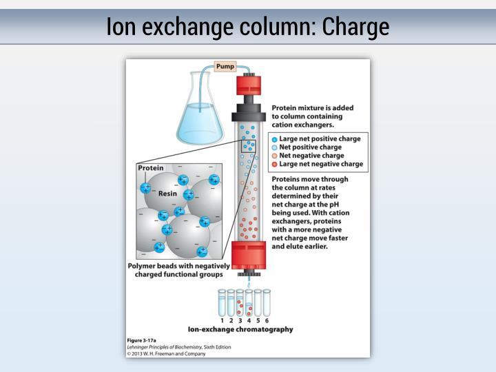 Ion exchange column: Charge