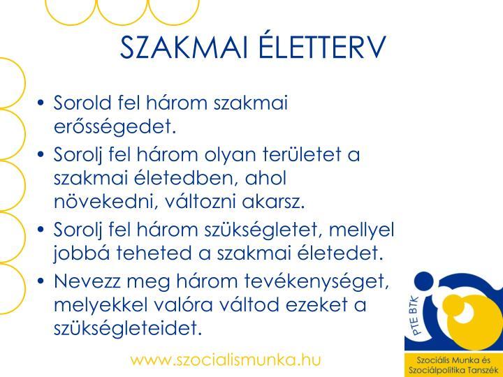SZAKMAI ÉLETTERV