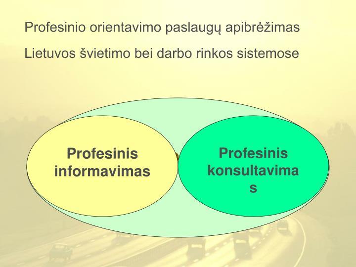 Profesinio orientavimo paslaugų apibrėžimas