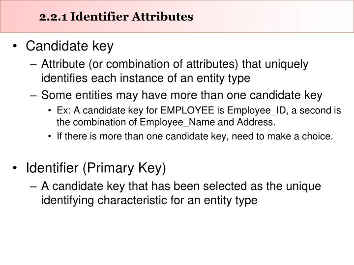 2.2.1 Identifier Attributes