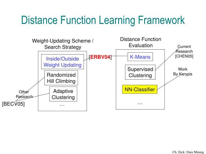 Distance Function Learning Framework