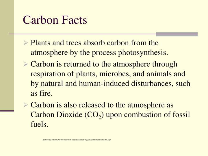 Carbon Facts