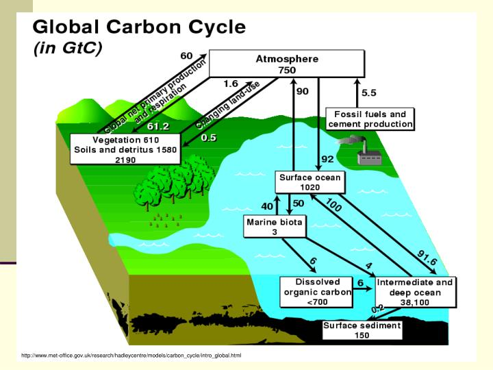 http://www.met-office.gov.uk/research/hadleycentre/models/carbon_cycle/intro_global.html