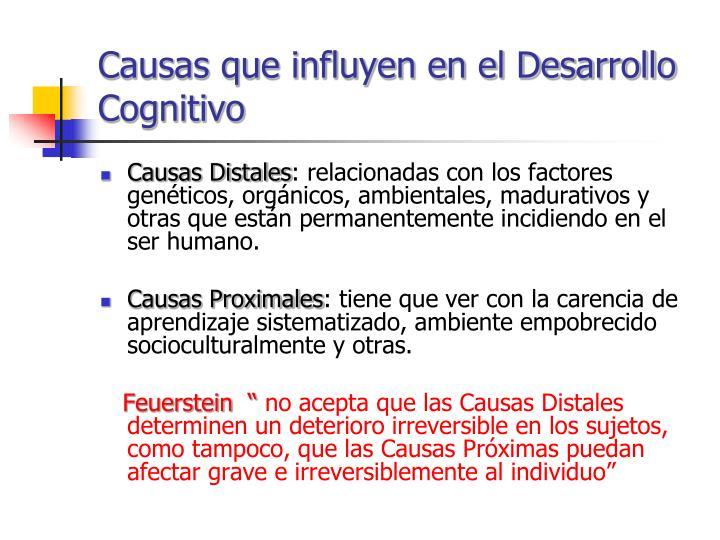 Causas que influyen en el Desarrollo Cognitivo