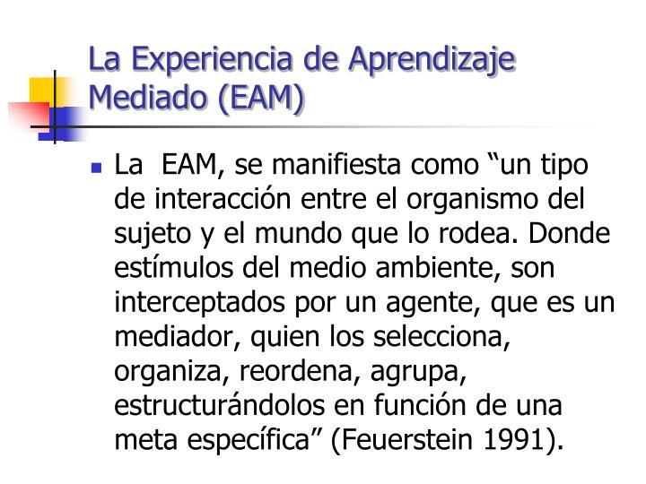 La Experiencia de Aprendizaje Mediado (EAM)