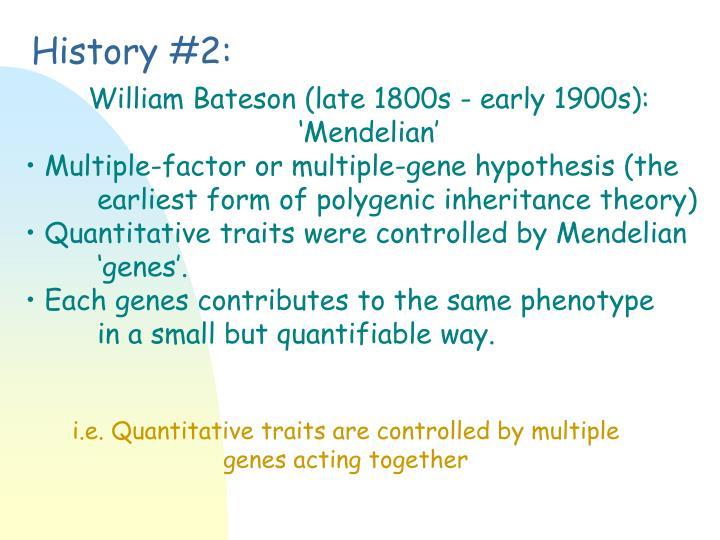 multiple factor hypothesis