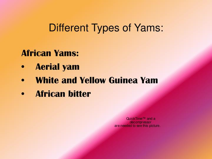 Different types of yams
