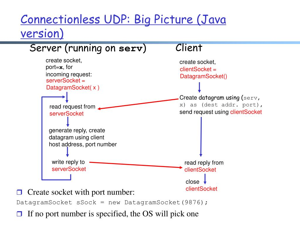 PPT - Network Applications: DNS, UDP Socket PowerPoint