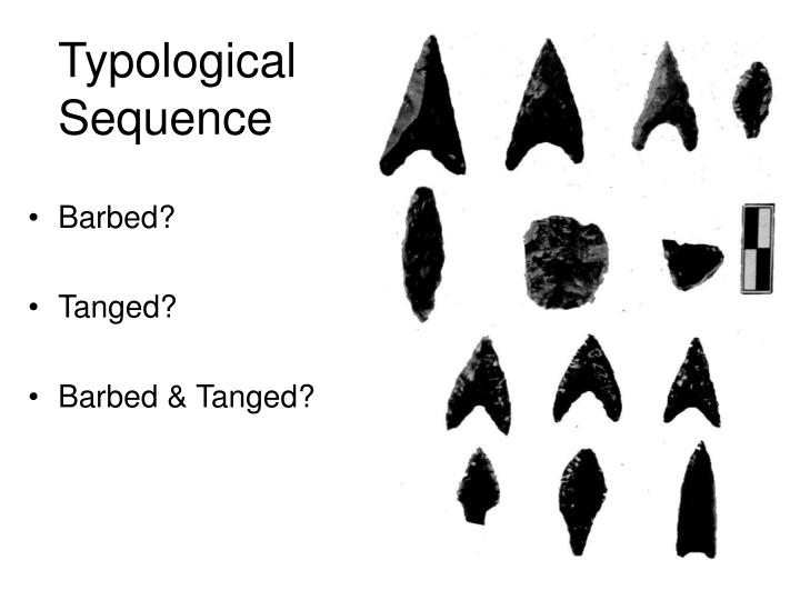 Typological Sequence