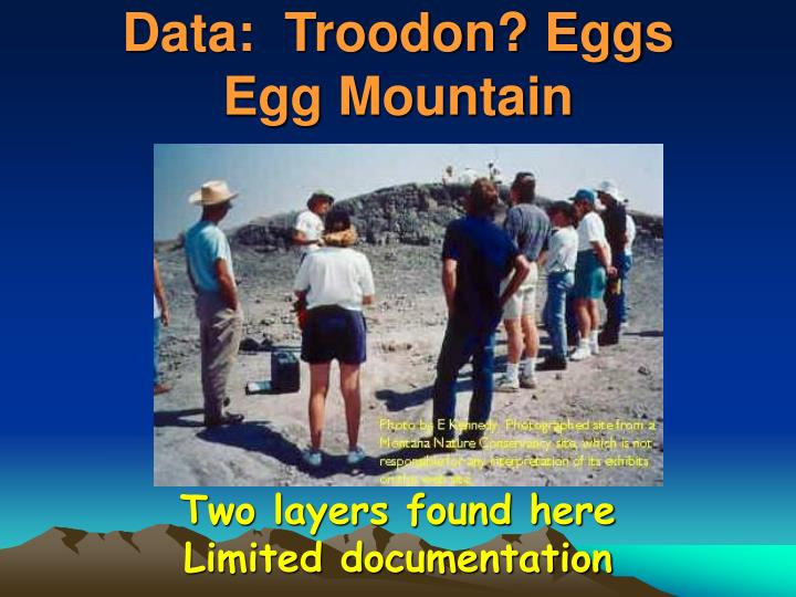 Data:  Troodon? Eggs