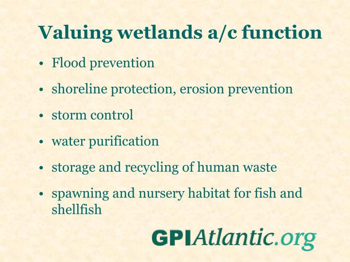 Valuing wetlands a/c function