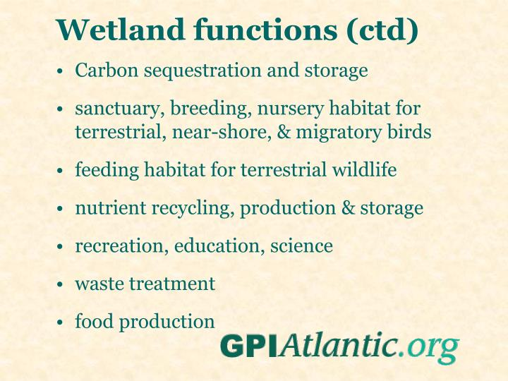 Wetland functions (ctd)