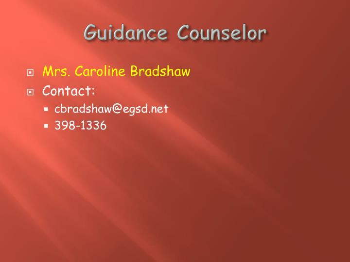 Guidance Counselor