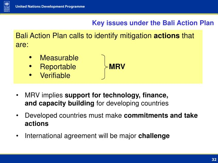 Key issues under the Bali Action Plan