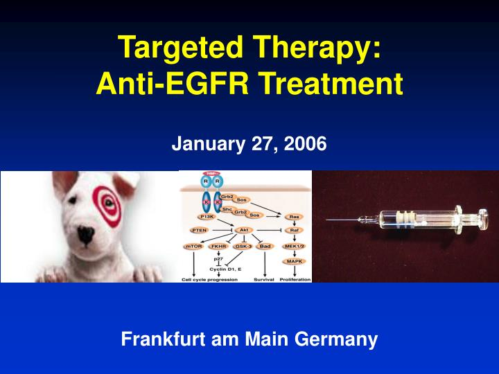 targeted therapy anti egfr treatment n.