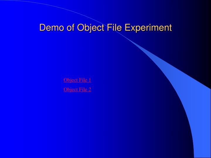 Demo of Object File Experiment