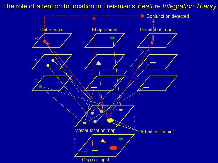 The role of attention to location in Treisman's