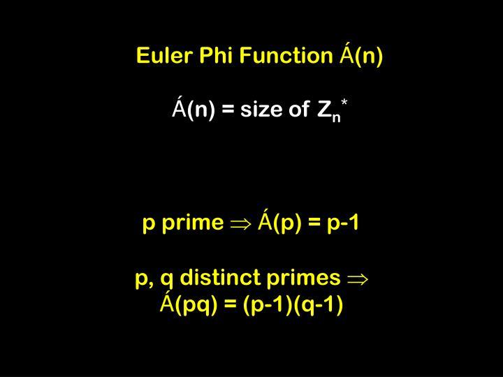 Euler Phi Function