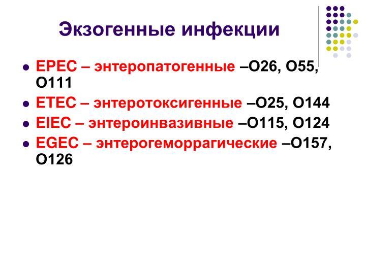 Экзогенные инфекции