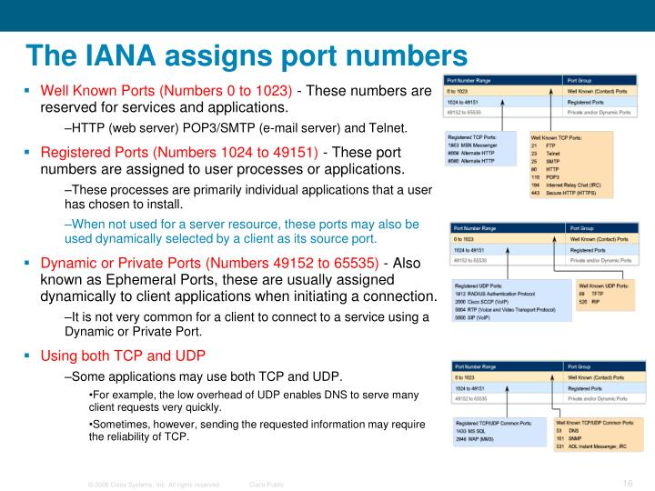 The IANA assigns port numbers