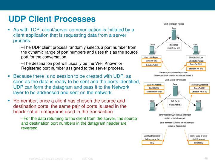 UDP Client Processes