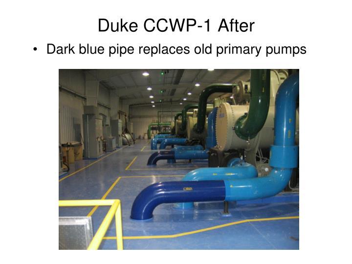 Duke CCWP-1 After