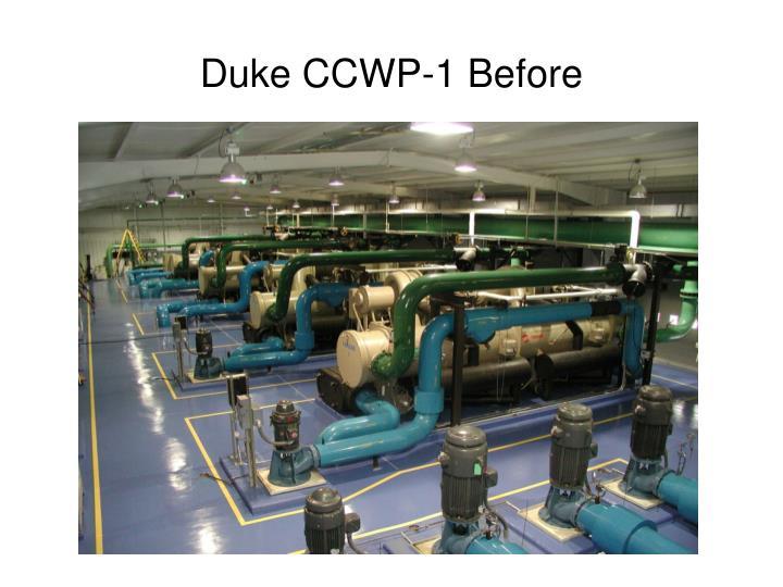 Duke CCWP-1 Before