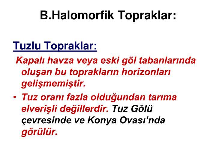 B.Halomorfik Topraklar: