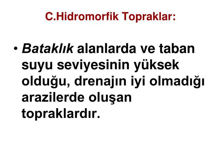 C.Hidromorfik Topraklar: