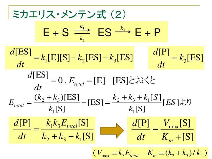 ミカエリス・メンテン式 (2)