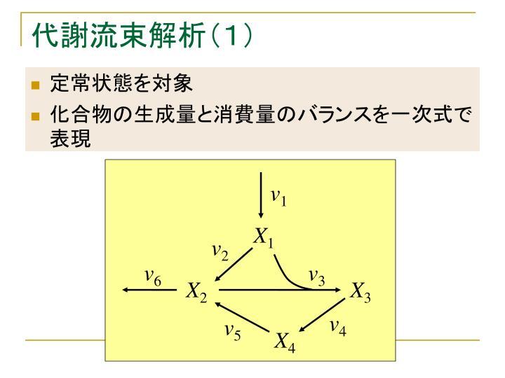 代謝流束解析(1)