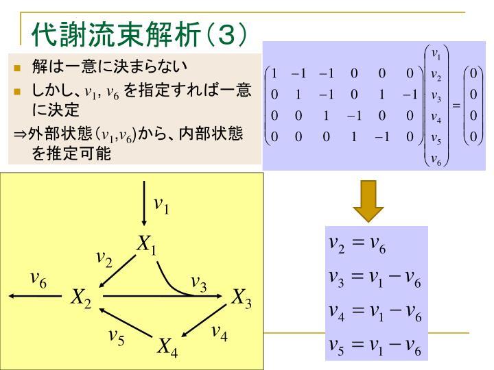代謝流束解析(3)